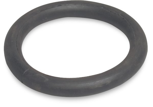 O-ring, for mounting PE, Perrot